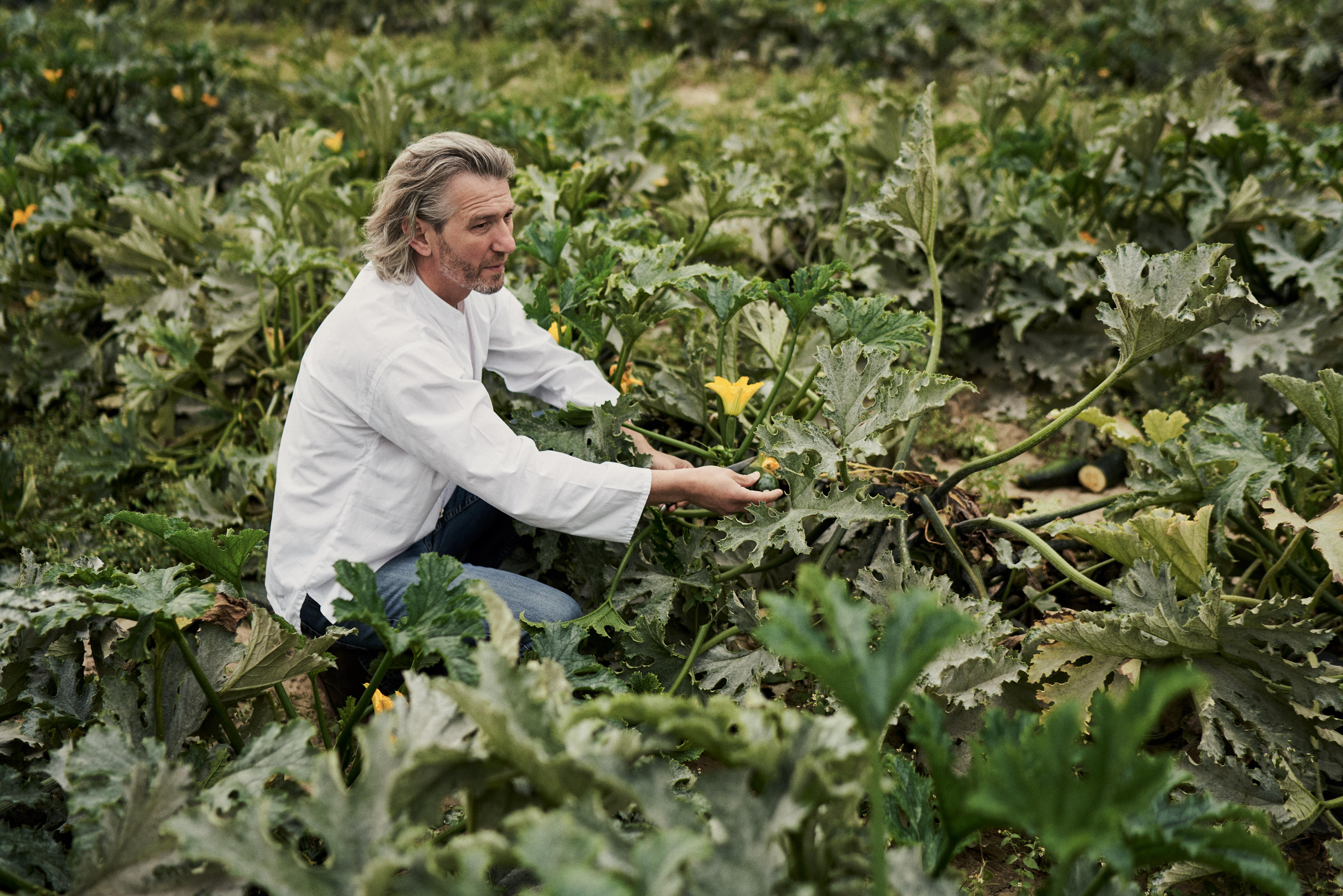 Gottfried auf dem Feld